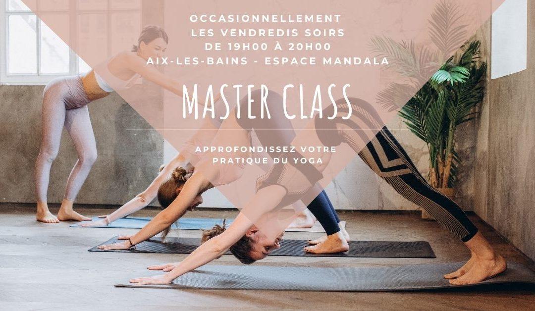 Master Class «Le mouvement Vinyasa»  – Vendredi 16 octobre à Aix-les-Bains